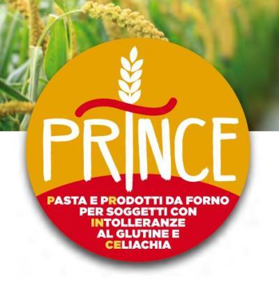 Logo del Progetto Prince